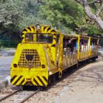 india-nehruzoo-train